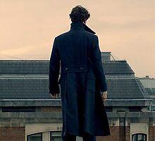 Sherlock Falls by MarinaArt