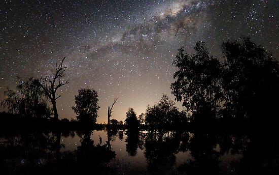 Still Life with trees by Alex Cherney