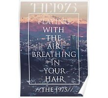 The 1975 - The 1975 Poster