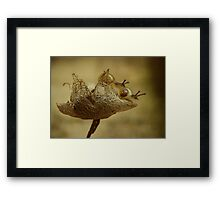Catch me if you can.... Framed Print