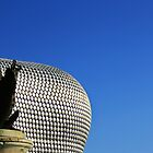 Nelson in the Bullring by emajgen