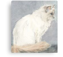 Fleur The Cat Canvas Print