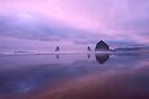 Cannon Beach reflections by Dan Mihai