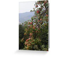 LE MELE  IN MONTAGNA .....località Noveglia / ITALIA/ 1000 VISUalizzazioni 30 giugno 2013- VETRINA RB EXPLORE 30 GIUGNO 2013  --- --- Greeting Card