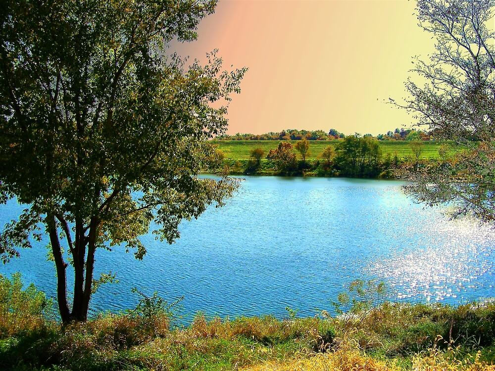 Favorite Fishing Spot by Cynthia Chronister