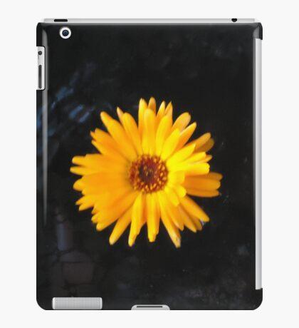Stress Relief iPad Case/Skin
