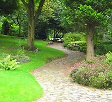 A Garden Pathway  by shelleybabe2