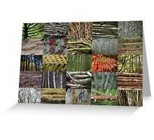 Woven Plants 5x5 Greeting Card