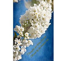 Thoughts Are Living Blossom Photographic Print