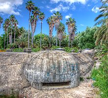 Palm Trees & Bunkers by manateevoyager