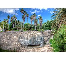 Palm Trees & Bunkers Photographic Print