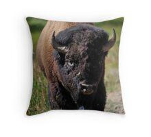 Yellowstone 2011 - Bison Throw Pillow