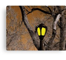 Lamp & Limbs Canvas Print