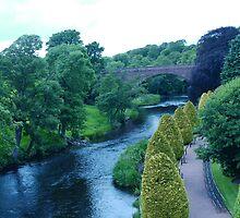 Bridge by the Brig-a-Doon, Ayrshire by raekin