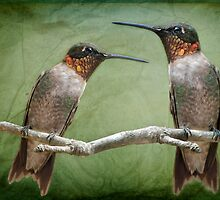 Hummingbird Neighbors by Bonnie T.  Barry