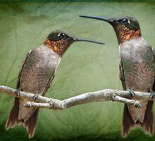 Hummingbird Neighbors by Bonnie T.  Barry