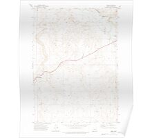 USGS Topo Map Oregon Rome 281309 1972 24000 Poster