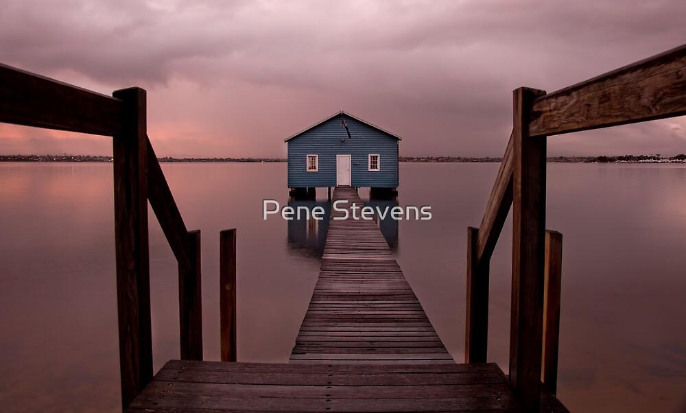 The Boatshed by Pene Stevens