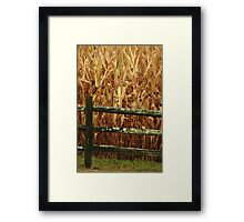 Corn popped up in Rows!! Literary !!  Framed Print
