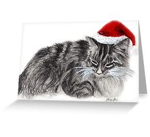 Christmas Hat Cat  Greeting Card