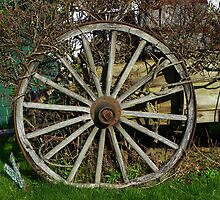 Old Wagon Wheel by MaryinMaine