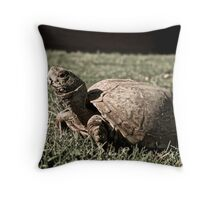 Desert Box Turtle Throw Pillow