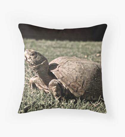 Desert Box Turtle Throw Pillow