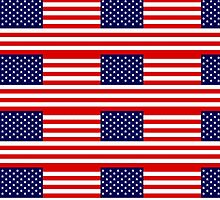 Stars and Stripes of USA by Picturestation