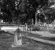 Resting in the Shade - Marietta City Cemetery by Scott Mitchell