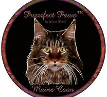 Purrrfect Paws™ Maine Coon by Liane Pinel