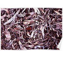 PaperBark Shavings & Pine Needles Poster