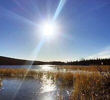 Lappland morning by Martin Kurkkio