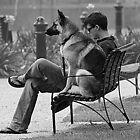 park bench by Steve Scully