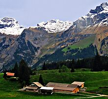 Beautiful Switzerland 2 by Margaret Stevens