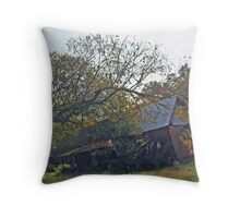Old House On County Road 24 Throw Pillow