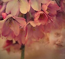 Blossom Baby  by Chris Armytage™