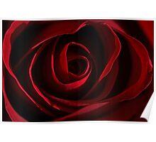 Reddest of Roses Poster