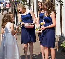The Bridesmaids by BizziLizzy