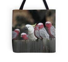 Galahs and Cockatoo Tote Bag