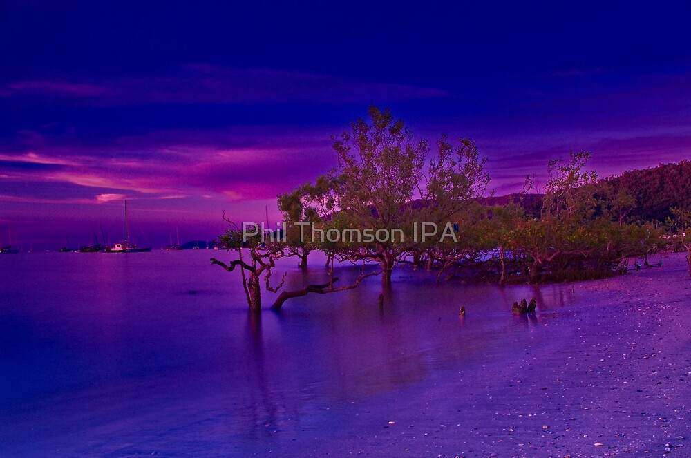 """Whitsunday Twilight"" by Phil Thomson IPA"