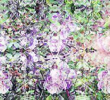P1440818 _P1440820 _XnView _GIMP by Juan Antonio Zamarripa