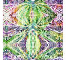 P1440850-P1440851 _XnView _GIMP Photographic Print