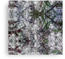 P1440855-P1440856 _XnView _GIMP Canvas Print