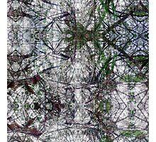 P1440855-P1440856 _XnView _GIMP Photographic Print