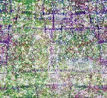 P1440881-P1440882 _XNVIEW _GIMP by Juan Antonio Zamarripa