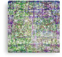 P1440881-P1440882 _XNVIEW _GIMP Canvas Print