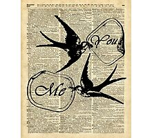 Swallows In Love,Flying birds Vintage Dictionary Art Collage Photographic Print