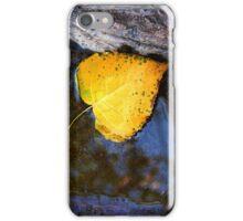 AUTUMN LEAF FALLEN iPhone Case/Skin