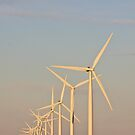 Wattle Point Wind Farm by burrster