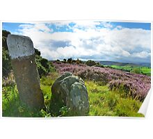 Rocks in the scenery, North Yorkshire Moors Poster